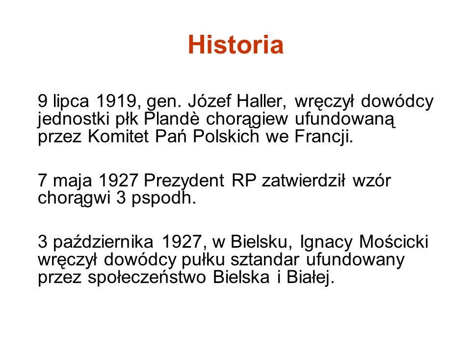 Historia 9 lipca 1919, gen. Józef Haller, wręczył dowódcy jednostki płk Plandè chorągiew ufundowaną przez Komitet Pań Polskich we Francji. 7 maja 1927