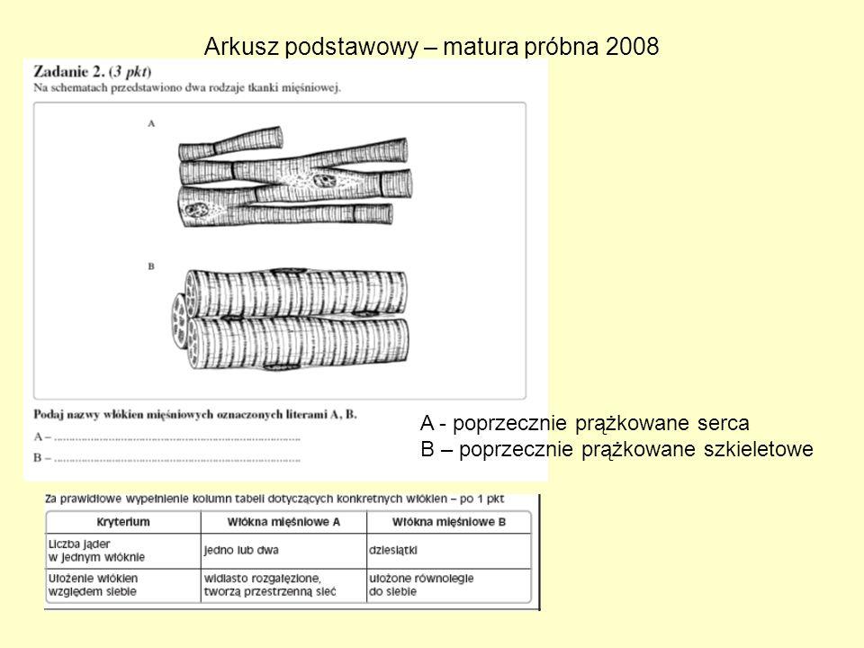 Arkusz podstawowy – matura próbna 2008 A - poprzecznie prążkowane serca B – poprzecznie prążkowane szkieletowe