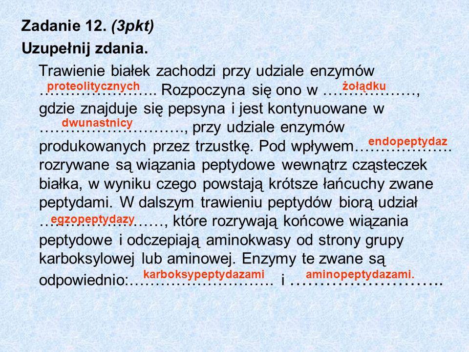 Zadanie 12. (3pkt) Uzupełnij zdania. Trawienie białek zachodzi przy udziale enzymów ………………….. Rozpoczyna się ono w ………………, gdzie znajduje się pepsyna