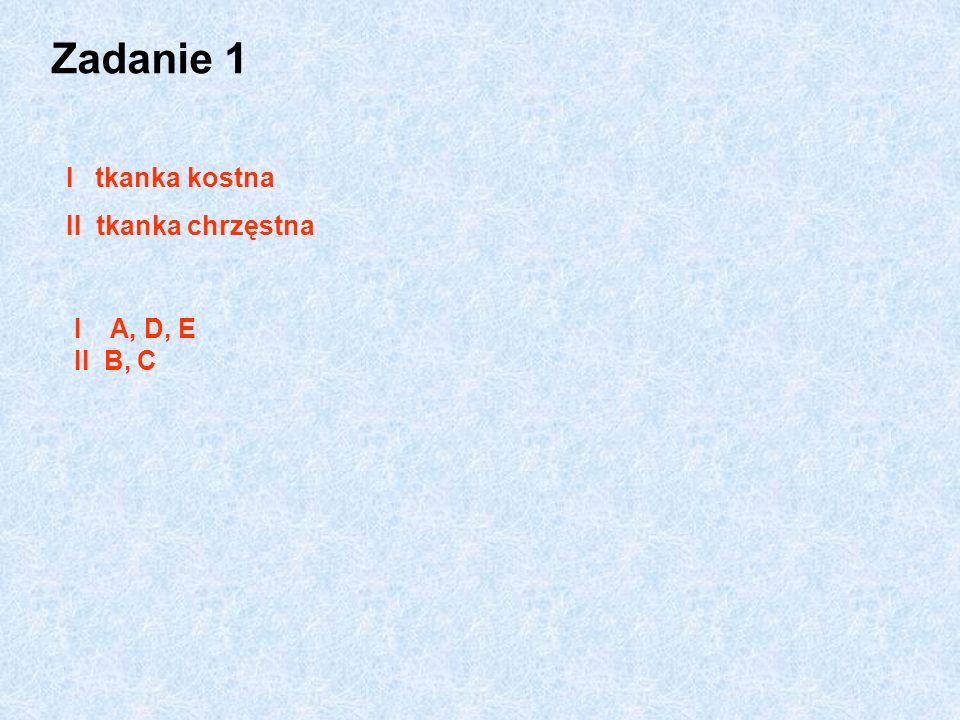 Zadanie 1 I tkanka kostna II tkanka chrzęstna I A, D, E II B, C