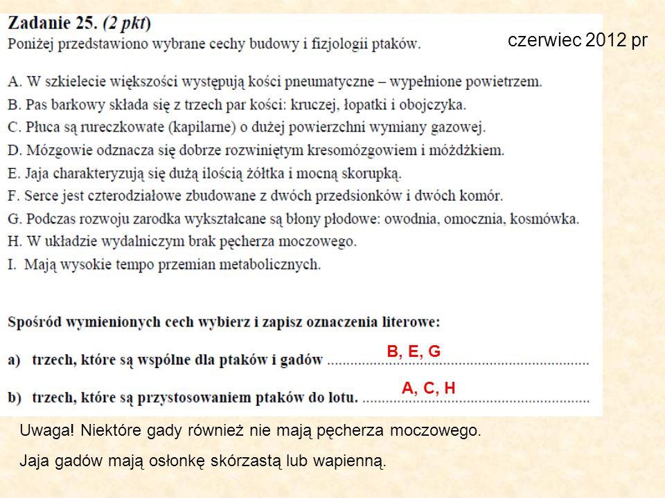 czerwiec 2012 pr B, E, G A, C, H Uwaga! Niektóre gady również nie mają pęcherza moczowego. Jaja gadów mają osłonkę skórzastą lub wapienną.