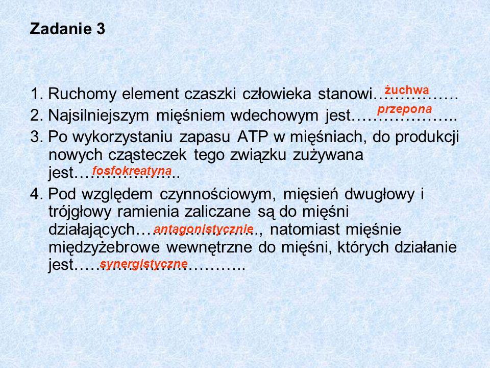 Zadanie 3 1. Ruchomy element czaszki człowieka stanowi……………. 2. Najsilniejszym mięśniem wdechowym jest……………….. 3. Po wykorzystaniu zapasu ATP w mięśni