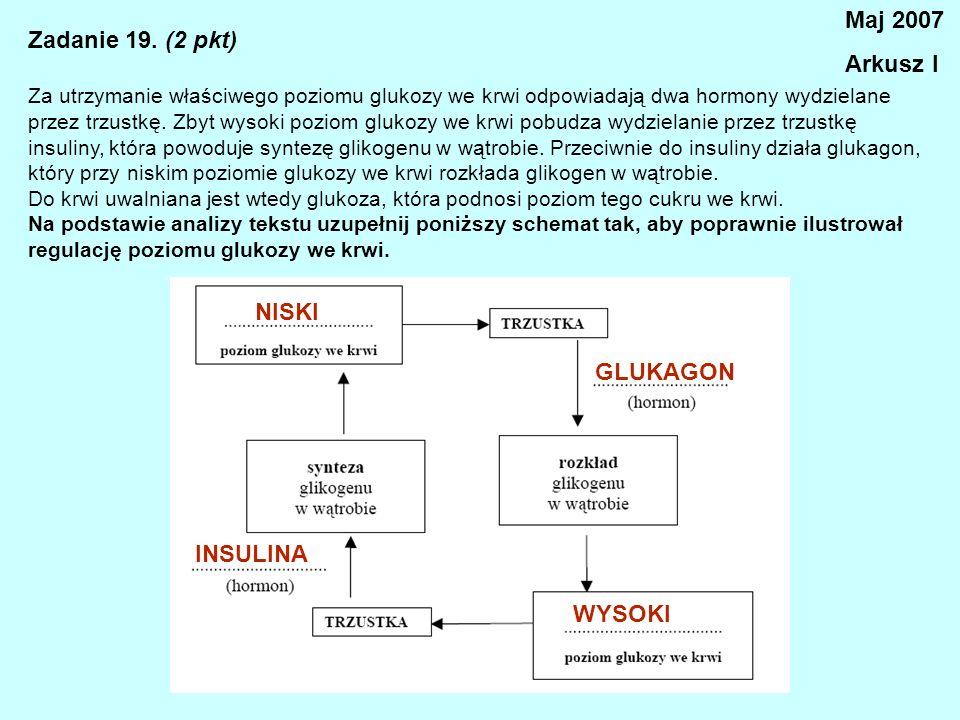 Zadanie 19. (2 pkt) Za utrzymanie właściwego poziomu glukozy we krwi odpowiadają dwa hormony wydzielane przez trzustkę. Zbyt wysoki poziom glukozy we