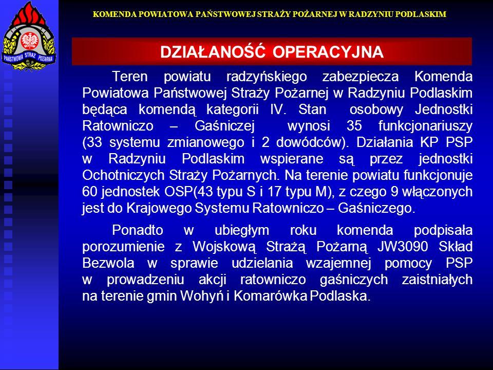 Teren powiatu radzyńskiego zabezpiecza Komenda Powiatowa Państwowej Straży Pożarnej w Radzyniu Podlaskim będąca komendą kategorii IV. Stan osobowy Jed