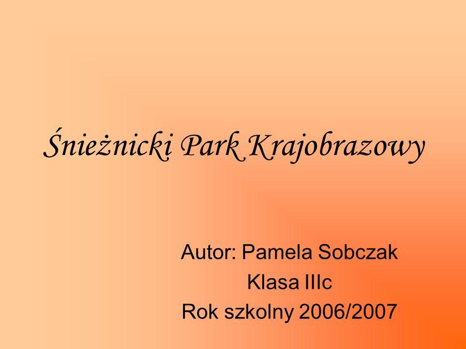 Śnieżnicki Park Krajobrazowy Autor: Pamela Sobczak Klasa IIIc Rok szkolny 2006/2007