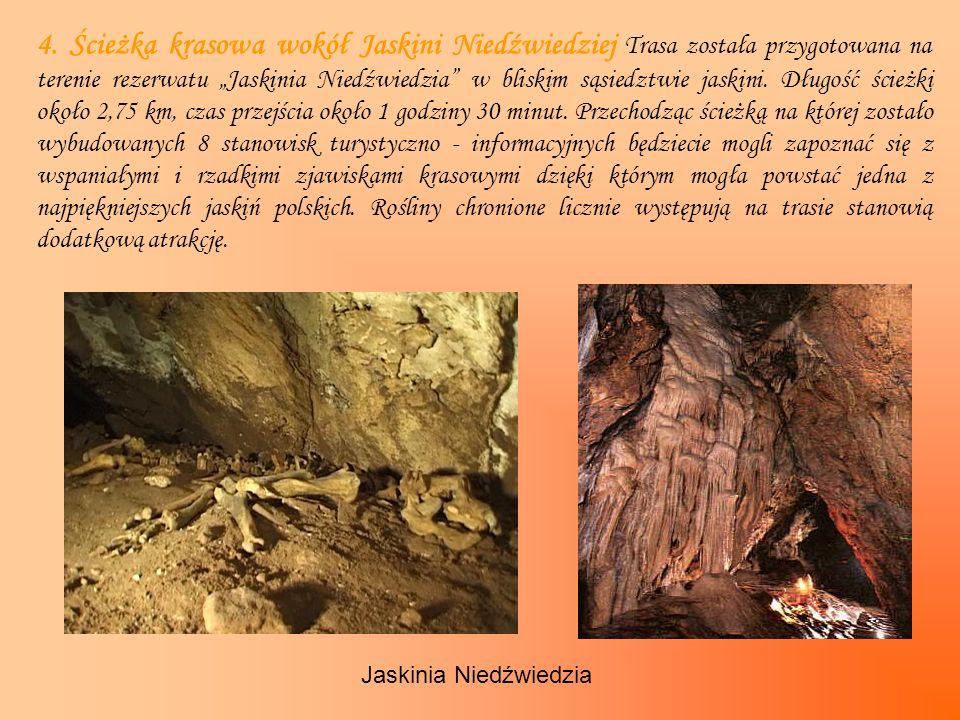 4. Ścieżka krasowa wokół Jaskini Niedźwiedziej Trasa została przygotowana na terenie rezerwatu Jaskinia Niedźwiedzia w bliskim sąsiedztwie jaskini. Dł