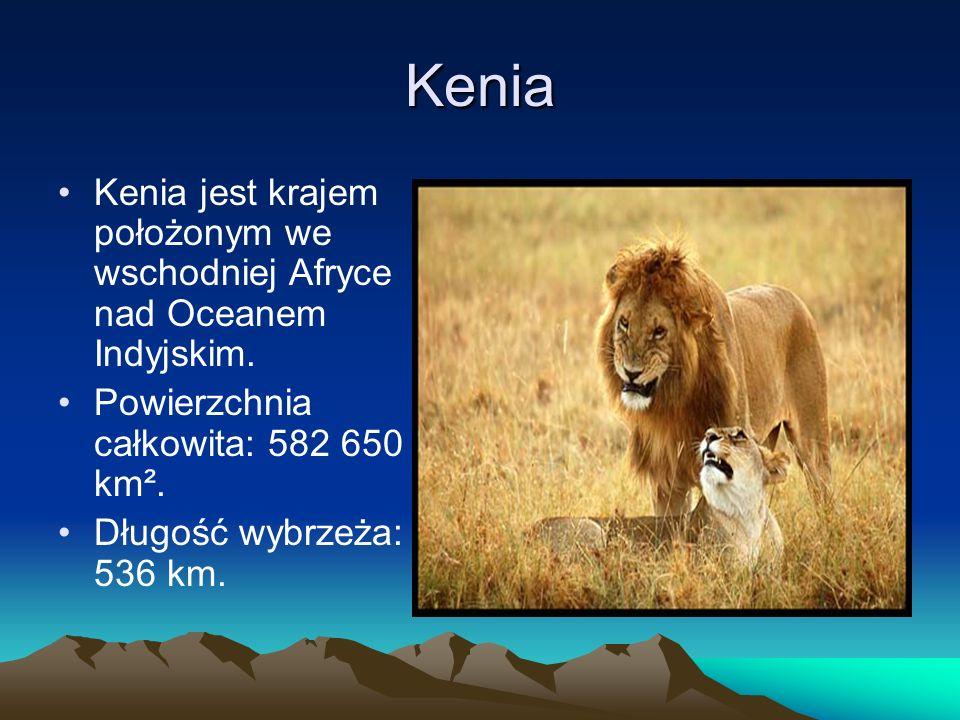 Kenia Kenia jest krajem położonym we wschodniej Afryce nad Oceanem Indyjskim. Powierzchnia całkowita: 582 650 km². Długość wybrzeża: 536 km.