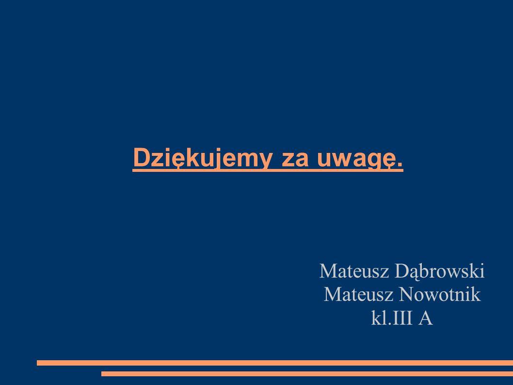 Dziękujemy za uwagę. Mateusz Dąbrowski Mateusz Nowotnik kl.III A