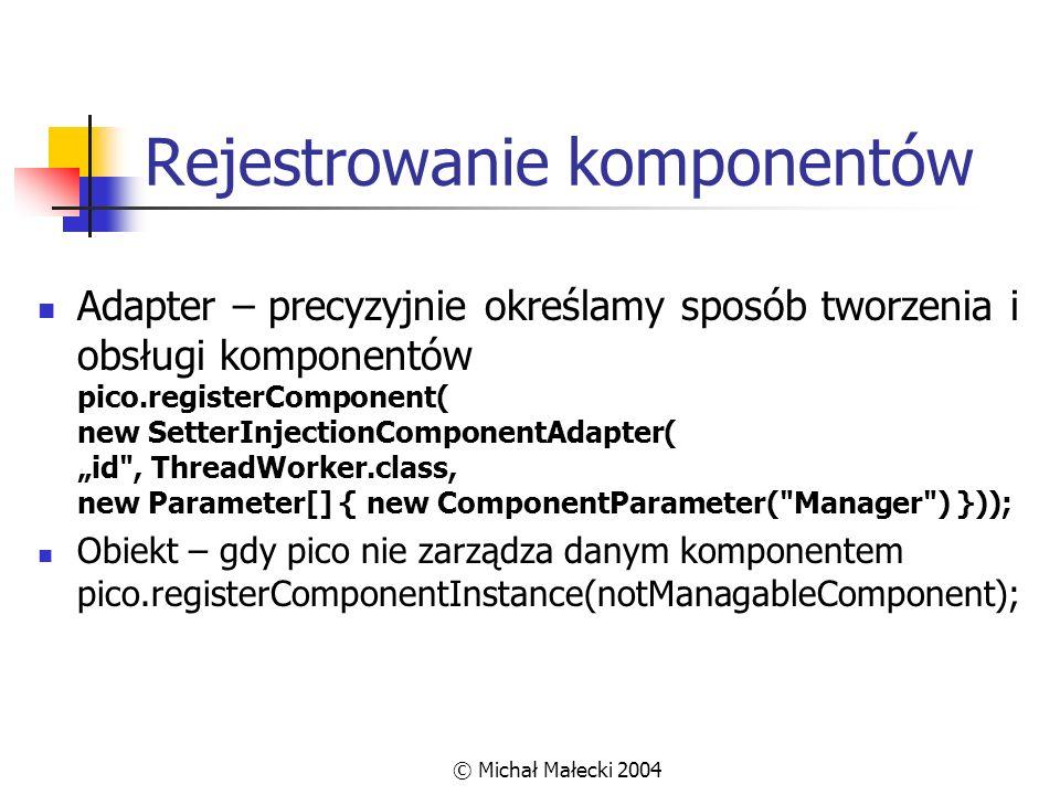 © Michał Małecki 2004 Rejestrowanie komponentów Adapter – precyzyjnie określamy sposób tworzenia i obsługi komponentów pico.registerComponent( new Set