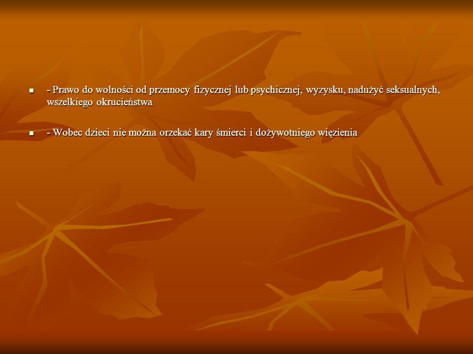 - Prawo do wolności od przemocy fizycznej lub psychicznej, wyzysku, nadużyć seksualnych, wszelkiego okrucieństwa - Prawo do wolności od przemocy fizyc