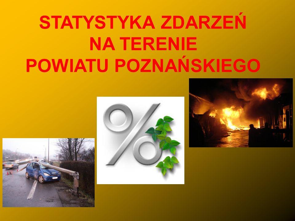 ZEGAR POŻARNICZY – 2009 ROK Zegar Pożarniczy KM PSP w Poznaniu Interwencje co 1 godz.