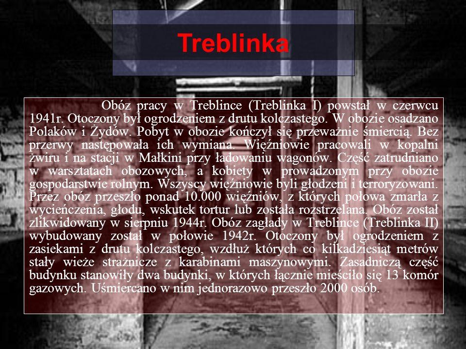Obóz pracy w Treblince (Treblinka I) powstał w czerwcu 1941r. Otoczony był ogrodzeniem z drutu kolczastego. W obozie osadzano Polaków i Żydów. Pobyt w