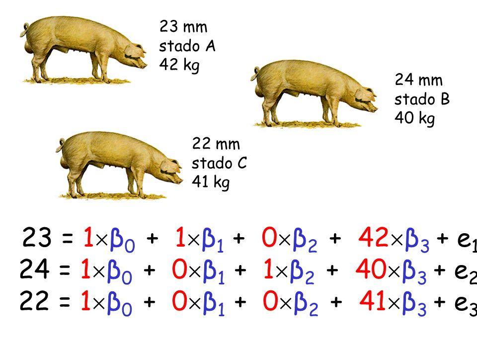 24 = 1 β 0 + 0 β 1 + 1 β 2 + 40 β 3 + e 2 22 = 1 β 0 + 0 β 1 + 0 β 2 + 41 β 3 + e 3 23 = 1 β 0 + 1 β 1 + 0 β 2 + 42 β 3 + e 1 23 mm stado A 42 kg 24 m
