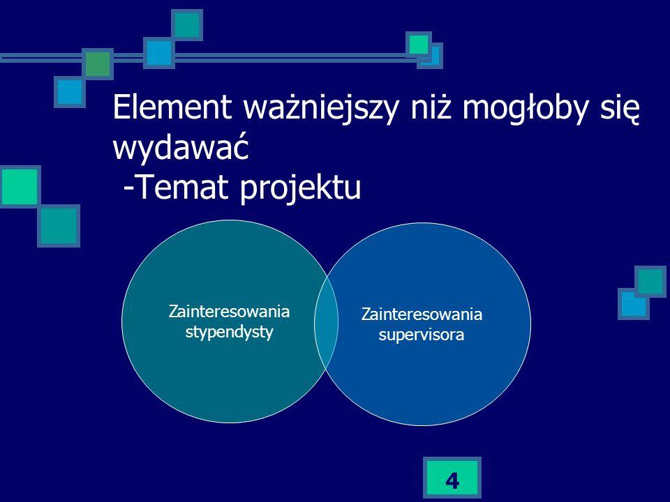 4 Element ważniejszy niż mogłoby się wydawać -Temat projektu Zainteresowania stypendysty Zainteresowania supervisora