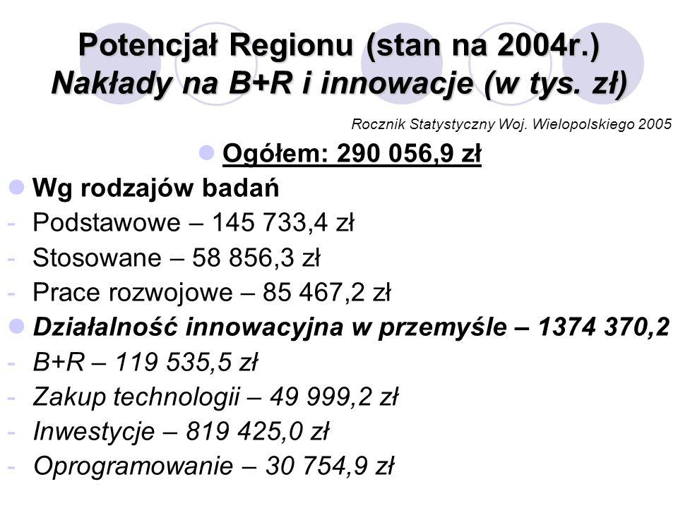 Potencjał Regionu (stan na 2004r.) Nakłady na B+R i innowacje (w tys. zł) Rocznik Statystyczny Woj. Wielopolskiego 2005 Ogółem: 290 056,9 zł Wg rodzaj