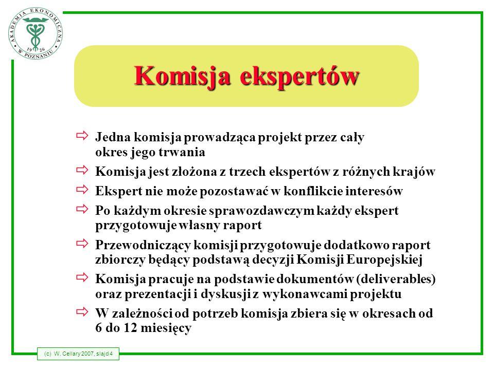 (c) W. Cellary 2007, slajd 4 Komisja ekspertów Jedna komisja prowadząca projekt przez cały okres jego trwania Komisja jest złożona z trzech ekspertów