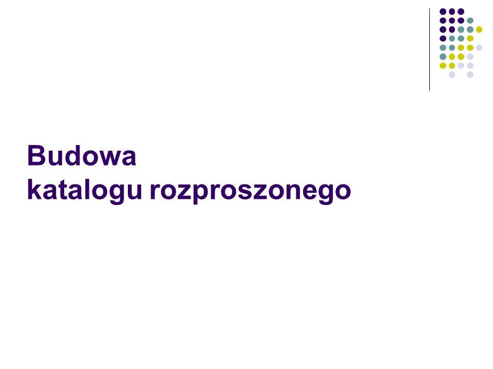 Interfejs katalogu rozproszonego Pliki konfiguracyjne są dostosowane do pracy interfejsu z jedną bazą Konieczność ujednolicania: Statusów Rewersów Lokalizacji