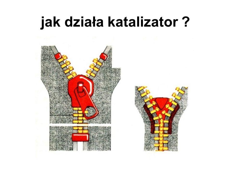 jak działa katalizator ?