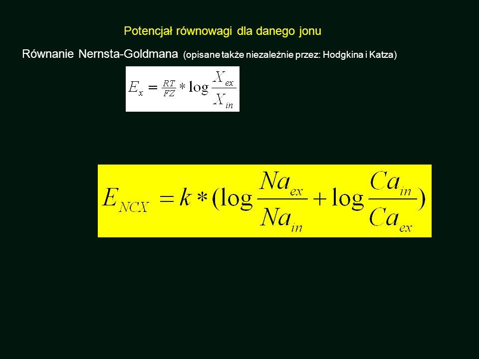Potencjał równowagi dla danego jonu Równanie Nernsta-Goldmana (opisane także niezależnie przez: Hodgkina i Katza)