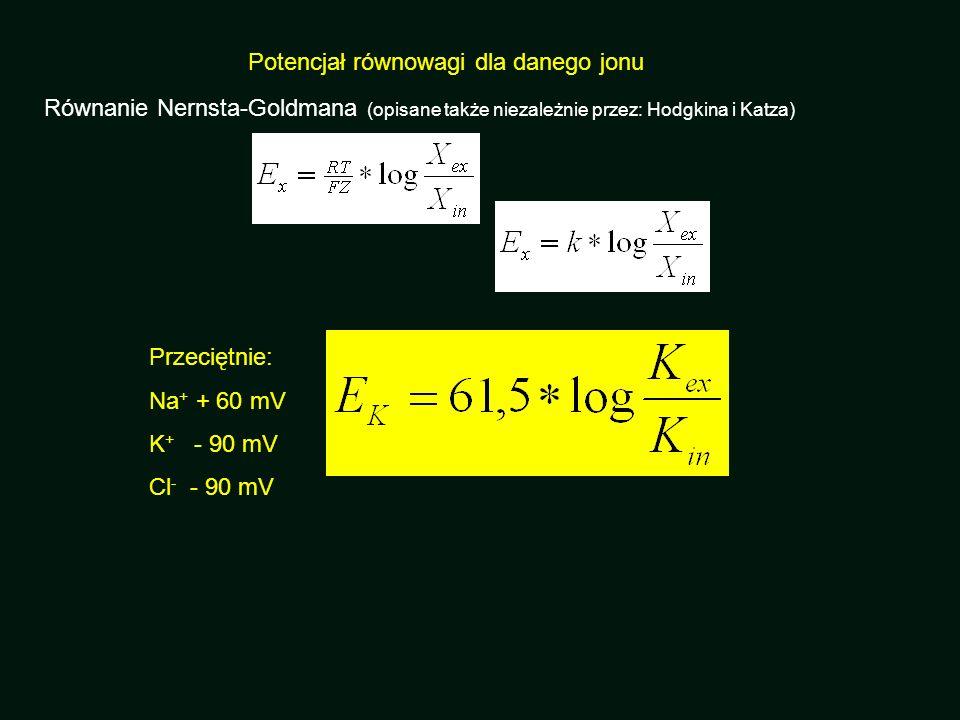 Przeciętnie: Na + + 60 mV K + - 90 mV Cl - - 90 mV Równanie Nernsta-Goldmana (opisane także niezależnie przez: Hodgkina i Katza)