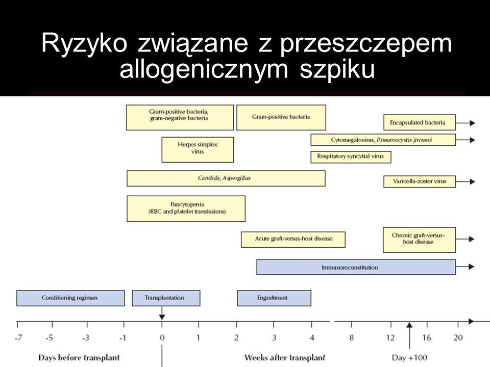 Ryzyko związane z przeszczepem allogenicznym szpiku