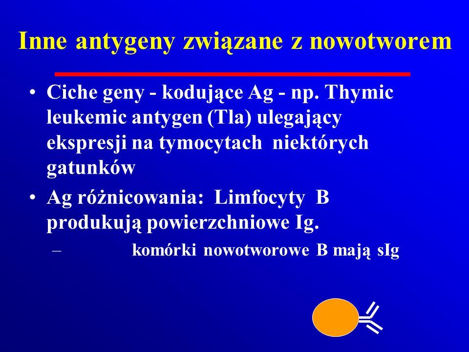 Inne antygeny związane z nowotworem Ciche geny - kodujące Ag - np. Thymic leukemic antygen (Tla) ulegający ekspresji na tymocytach niektórych gatunków
