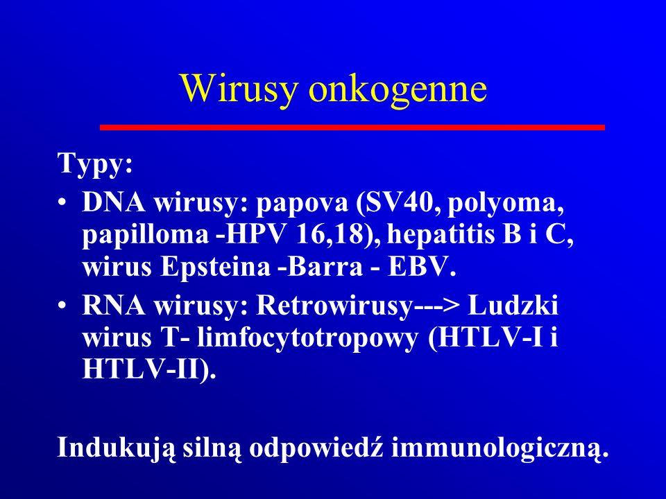 Typy: DNA wirusy: papova (SV40, polyoma, papilloma -HPV 16,18), hepatitis B i C, wirus Epsteina -Barra - EBV. RNA wirusy: Retrowirusy---> Ludzki wirus