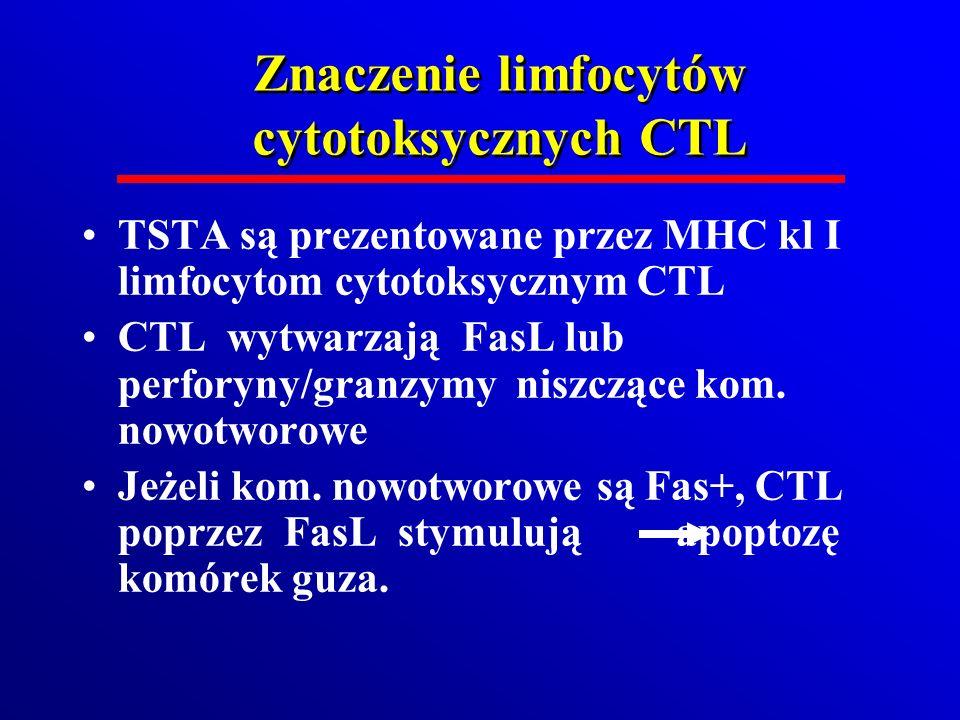 Znaczenie limfocytów cytotoksycznych CTL TSTA są prezentowane przez MHC kl I limfocytom cytotoksycznym CTL CTL wytwarzają FasL lub perforyny/granzymy