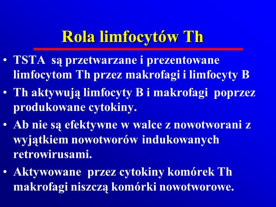 Rola limfocytów Th TSTA są przetwarzane i prezentowane limfocytom Th przez makrofagi i limfocyty B Th aktywują limfocyty B i makrofagi poprzez produko