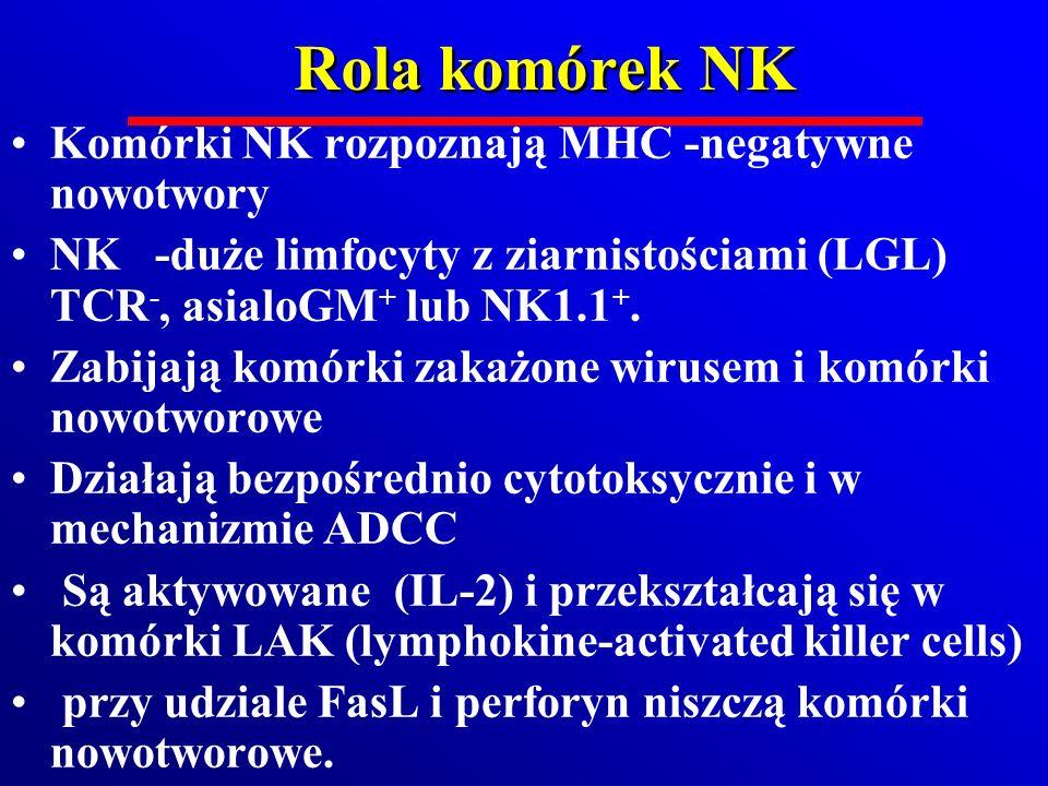 Rola komórek NK Komórki NK rozpoznają MHC -negatywne nowotwory NK -duże limfocyty z ziarnistościami (LGL) TCR -, asialoGM + lub NK1.1 +. Zabijają komó