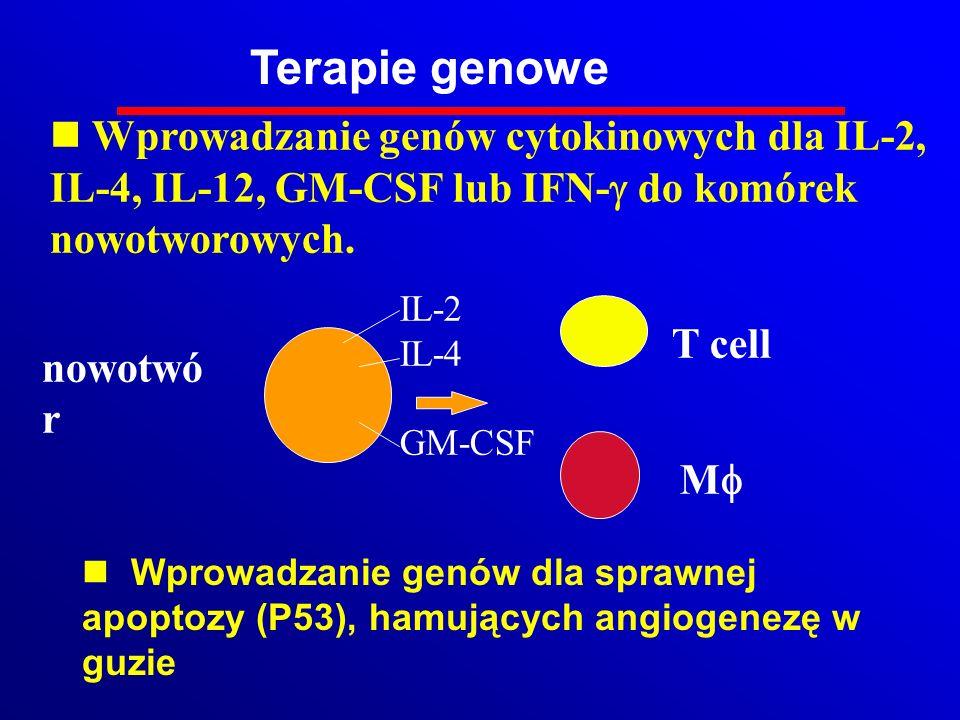 Wprowadzanie genów cytokinowych dla IL-2, IL-4, IL-12, GM-CSF lub IFN- do komórek nowotworowych. nowotwó r T cell M IL-2 IL-4 GM-CSF Terapie genowe n