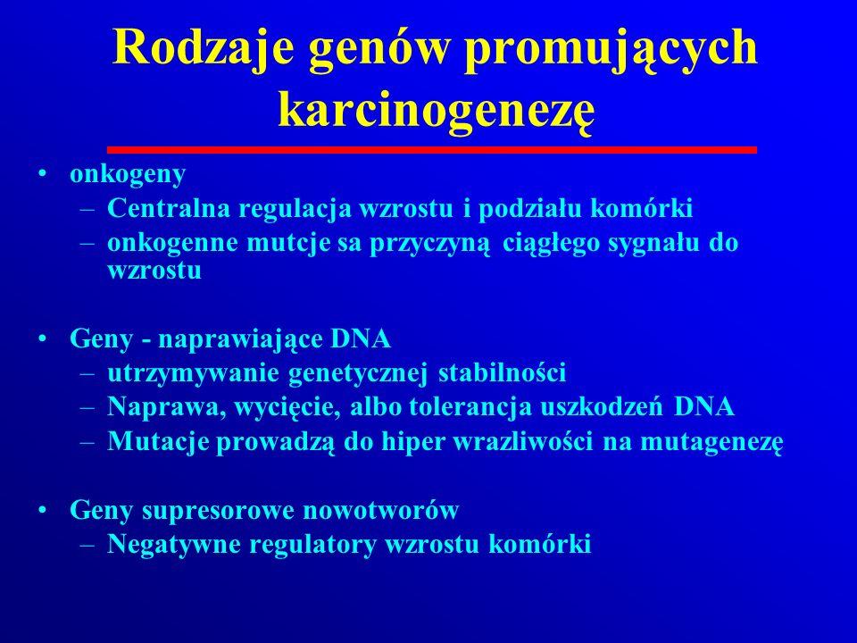 Rodzaje genów promujących karcinogenezę onkogeny –Centralna regulacja wzrostu i podziału komórki –onkogenne mutcje sa przyczyną ciągłego sygnału do wz