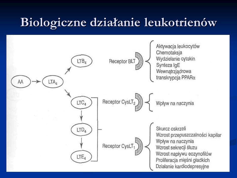 Biologiczne działanie leukotrienów