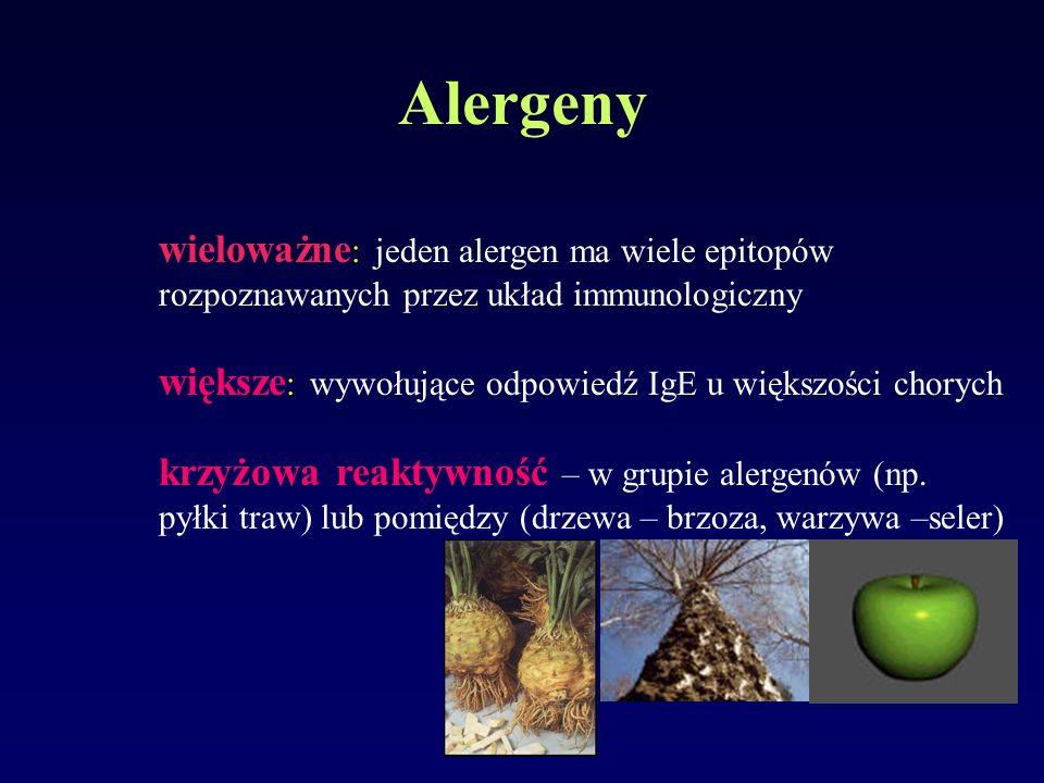 Alergeny wieloważne : jeden alergen ma wiele epitopów rozpoznawanych przez układ immunologiczny większe : wywołujące odpowiedź IgE u większości choryc