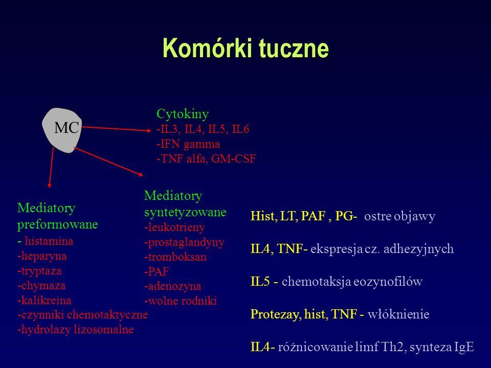 Komórki tuczne MC Mediatory preformowane - histamina -heparyna -tryptaza -chymaza -kalikreina -czynniki chemotaktyczne -hydrolazy lizosomalne Mediator