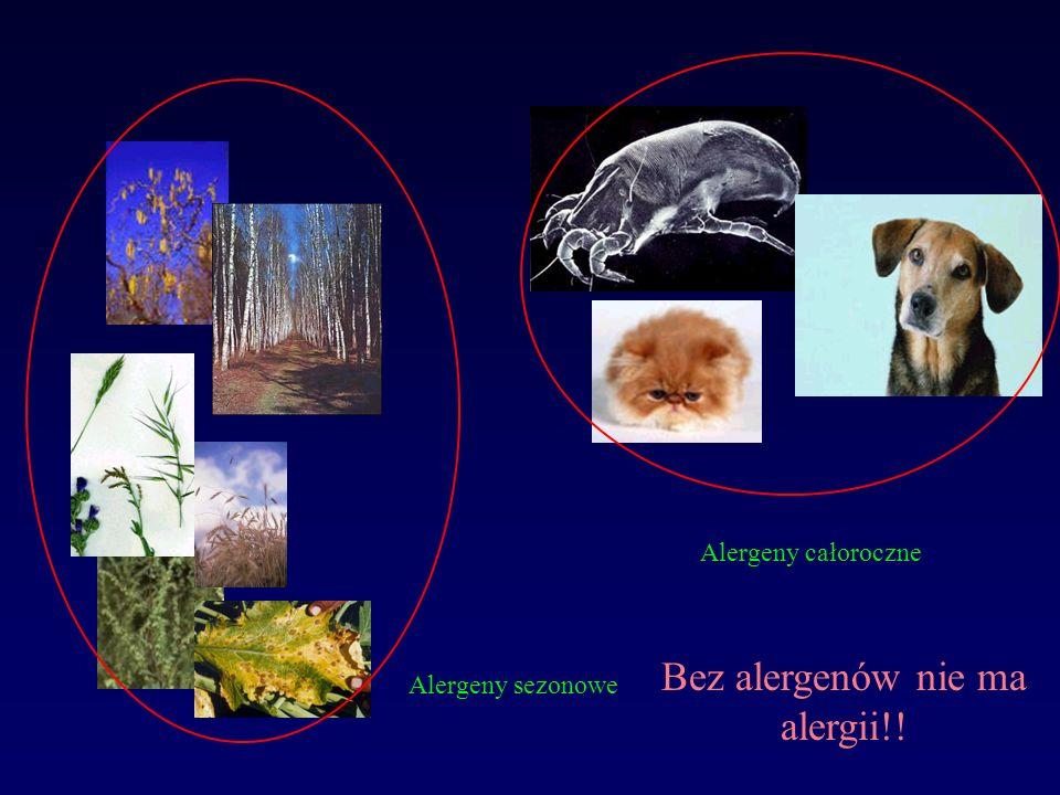 Alergeny całoroczne Alergeny sezonowe Bez alergenów nie ma alergii!!