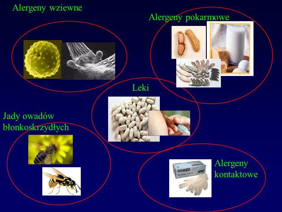 Alergeny wieloważne : jeden alergen ma wiele epitopów rozpoznawanych przez układ immunologiczny większe : wywołujące odpowiedź IgE u większości chorych krzyżowa reaktywność – w grupie alergenów (np.