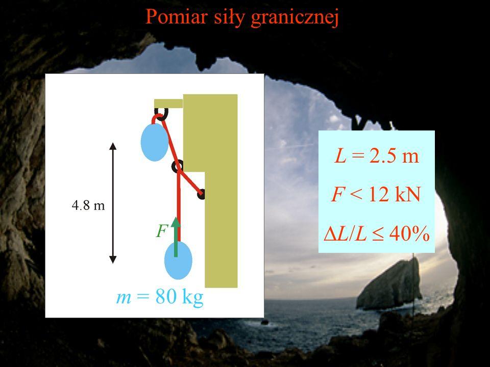Pomiar siły granicznej F L = 2.5 m F < 12 kN L/L 40% m = 80 kg