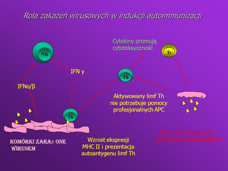 W irus Efekt cytotkosyczny B Y Aktywacja poliklonalna Ekspresja bia ł ek wirusa na komórkach- stygmat obco ś ci Reakcja krzy ż owa * H BV i mielina * Polio i AchR