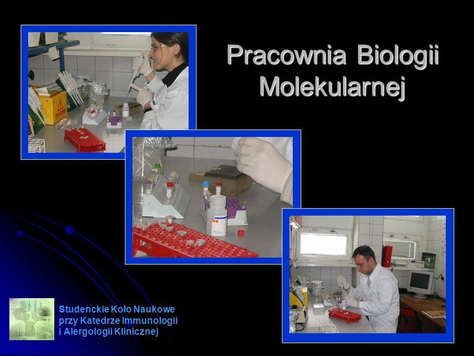 Pracownia Biologii Molekularnej Studenckie Koło Naukowe przy Katedrze Immunologii i Alergologii Klinicznej