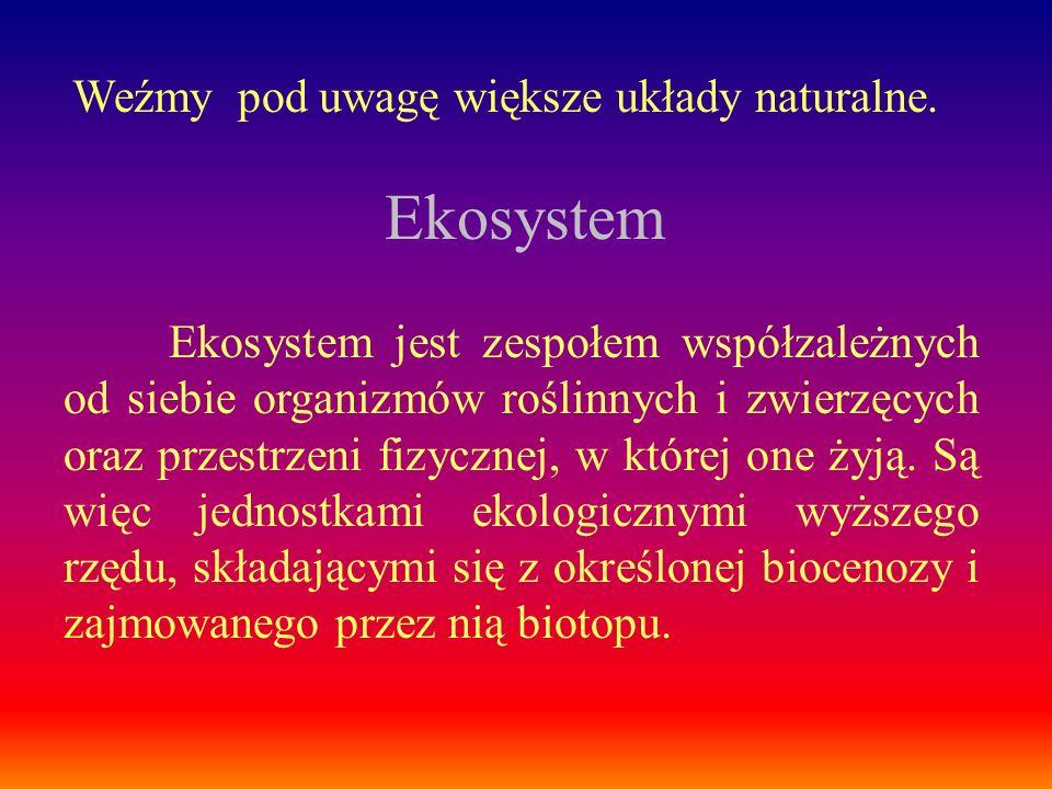 Ekosystem jest zespołem współzależnych od siebie organizmów roślinnych i zwierzęcych oraz przestrzeni fizycznej, w której one żyją. Są więc jednostkam