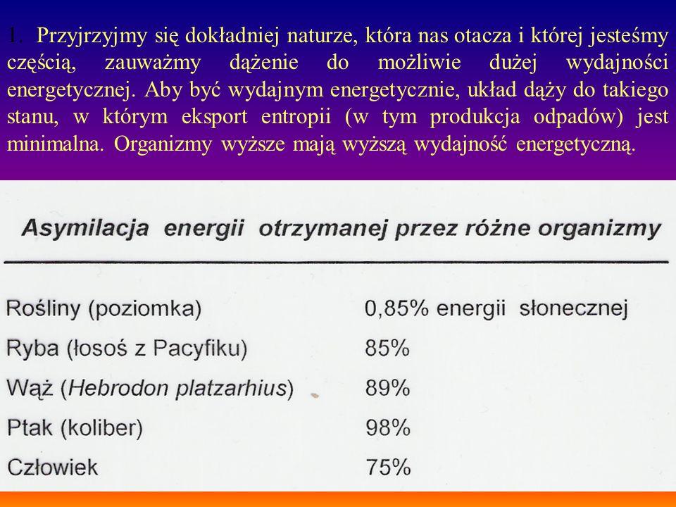 1. Przyjrzyjmy się dokładniej naturze, która nas otacza i której jesteśmy częścią, zauważmy dążenie do możliwie dużej wydajności energetycznej. Aby by