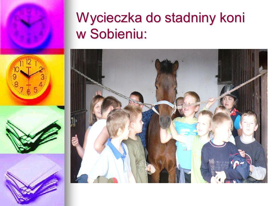 Wycieczka do stadniny koni w Sobieniu: