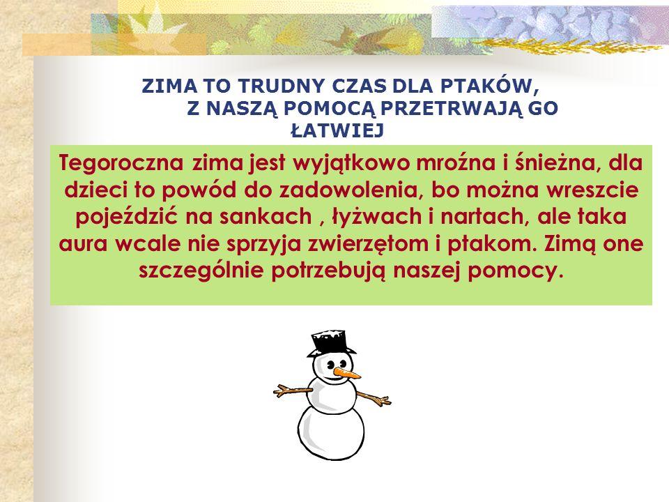 Dokarmianie ptaków i zwierząt leśnych zimą Autorki Dorota Olejnik Sylwia Łaguniak Fotografie wykorzystane w prezentacji są własnością autorek