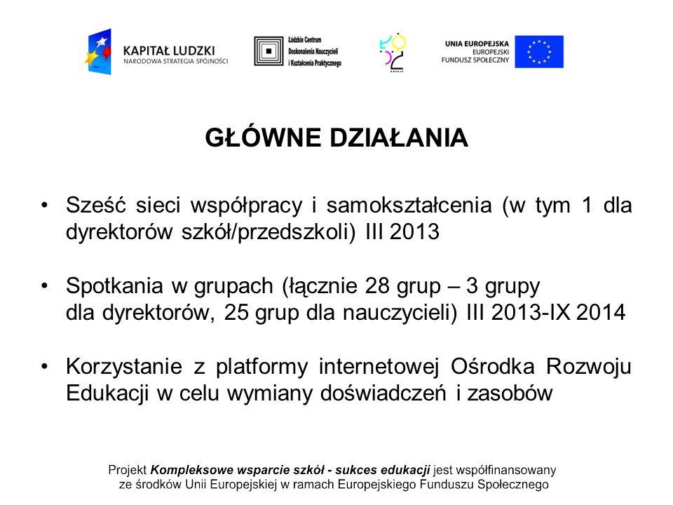 GŁÓWNE DZIAŁANIA Sześć sieci współpracy i samokształcenia (w tym 1 dla dyrektorów szkół/przedszkoli) III 2013 Spotkania w grupach (łącznie 28 grup – 3