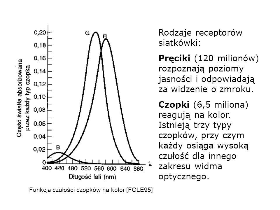 Rodzaje receptorów siatkówki: Pręciki (120 milionów) rozpoznają poziomy jasności i odpowiadają za widzenie o zmroku. Czopki (6,5 miliona) reagują na k