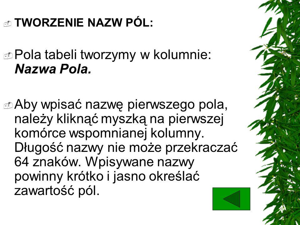TWORZENIE NAZW PÓL: Pola tabeli tworzymy w kolumnie: Nazwa Pola. Aby wpisać nazwę pierwszego pola, należy kliknąć myszką na pierwszej komórce wspomnia
