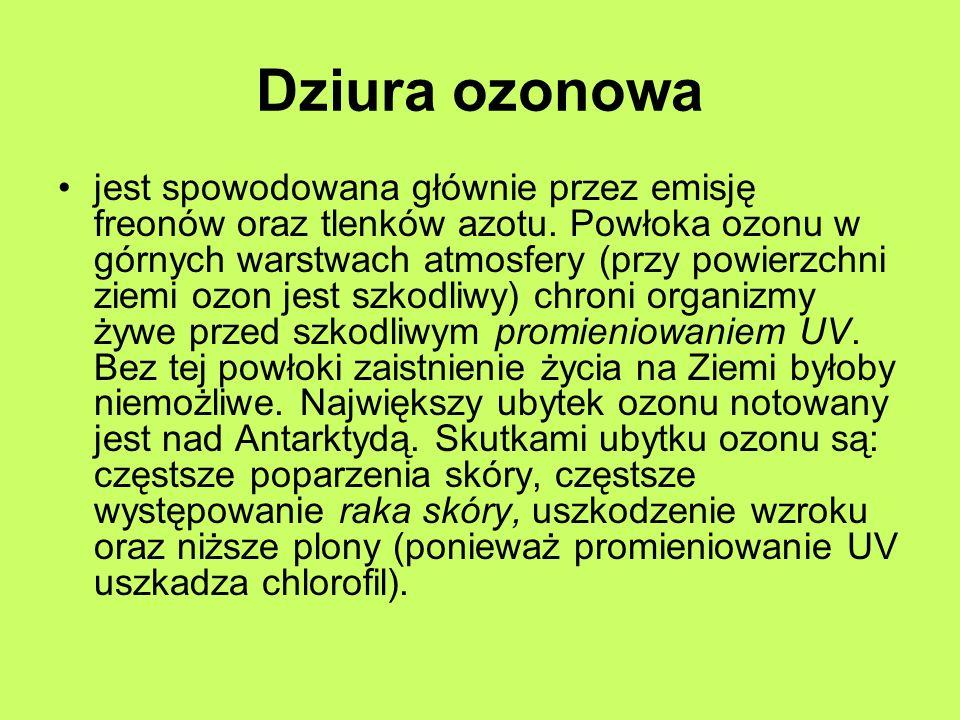 Dziura ozonowa jest spowodowana głównie przez emisję freonów oraz tlenków azotu. Powłoka ozonu w górnych warstwach atmosfery (przy powierzchni ziemi o