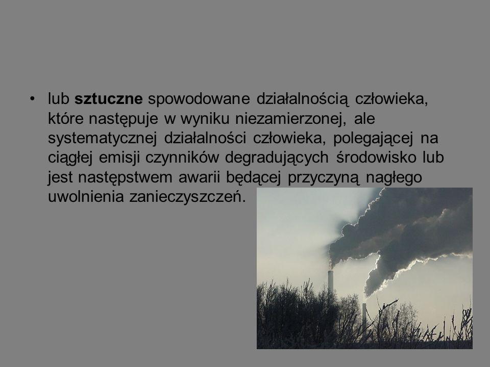 Skutki zanieczyszczenia środowiska Najpoważniejszymi dotychczas odczuwanymi przez nas skutkami degradacji środowiska są: Globalne ocieplenie Dziura ozonowa Smog Ozon przygruntowy Kwaśne deszcze
