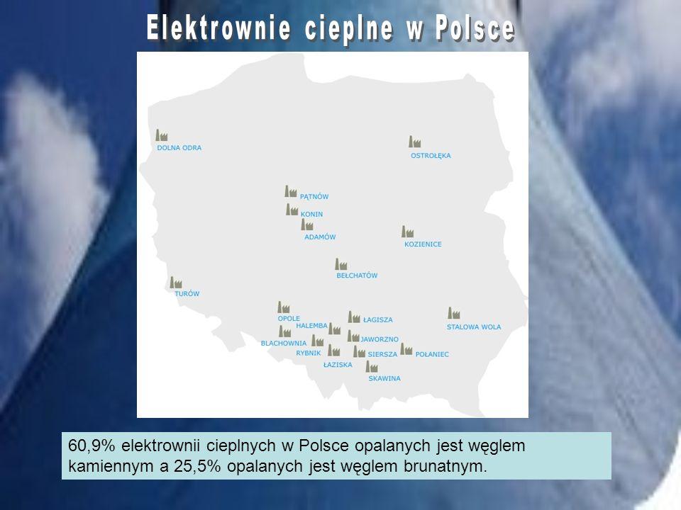 60,9% elektrownii cieplnych w Polsce opalanych jest węglem kamiennym a 25,5% opalanych jest węglem brunatnym.